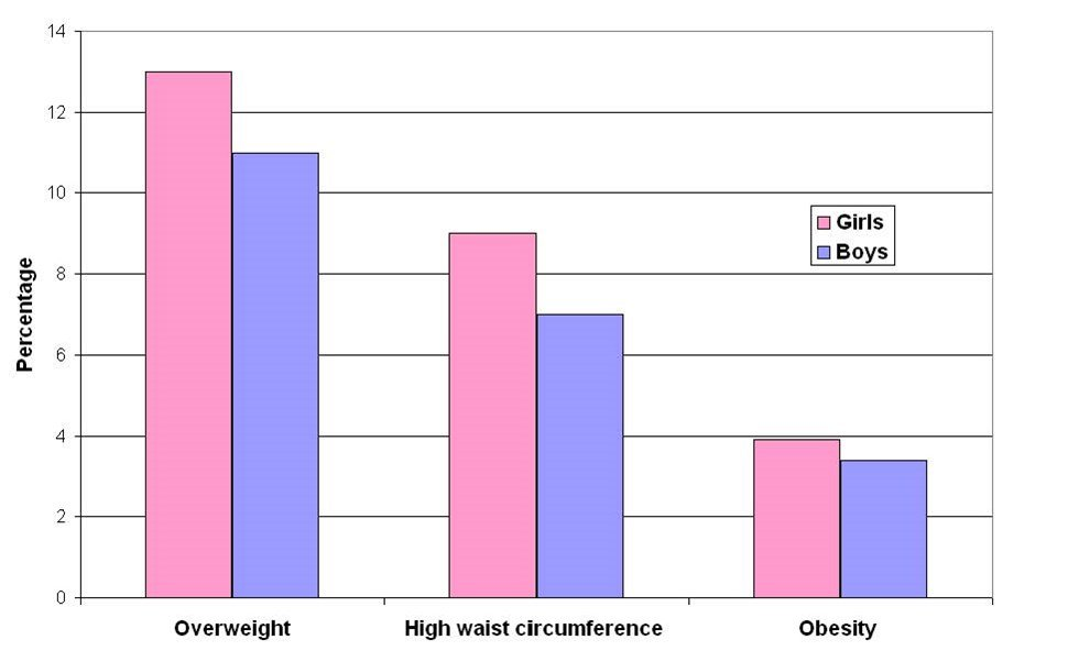 overweight, obesity, high waist circumference, 2008 adjusted, boys and girls, Child Growth Study.